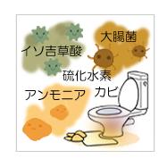 トイレ臭、アンモニア、硫化水素、大腸菌